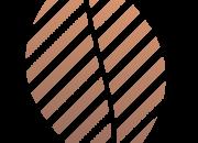 logo-smoke-shop